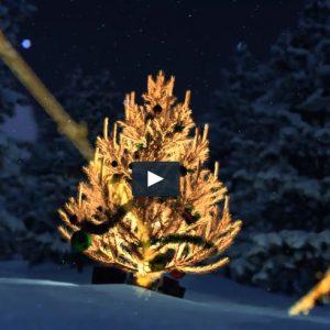 Video arbol navidad