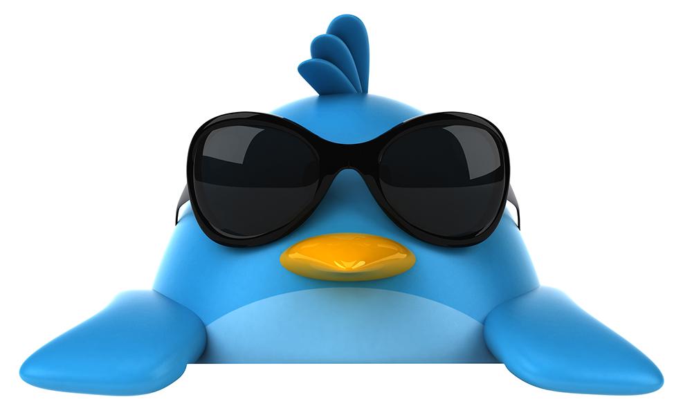 pájaro twitter con gafas de sol